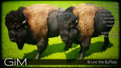 Screenshot_AnimalsBuffalo_01