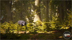 Black Bear - Gim - Realistic animated 3D model