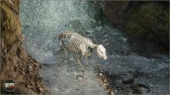 Brown Bear Male Gim Realistic Animated 3D Model-4
