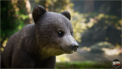 Brown Bear Yung Gim Realistic Animated 3D Model