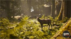 Chital_Games_in_Motion_Realistic_Animated_3D_Model-7