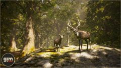 Chital_Games_in_Motion_Realistic_Animated_3D_Model-8