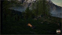Cougar_M_04