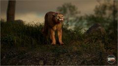 Cougar_M_05