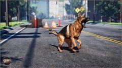 German Shepherd - Games in Motion - Realistic Animated 3D Model