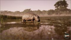 Hippopotamus-Games_in_Motion_Realistic_Animated_3D_Model-1