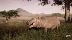 Hippopotamus-Games_in_Motion_Realistic_Animated_3D_Model-10