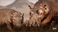 Hippopotamus-Games_in_Motion_Realistic_Animated_3D_Model-3