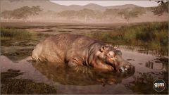Hippopotamus-Games_in_Motion_Realistic_Animated_3D_Model-7