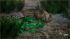 Games_in_Motion_Realistic_Animated_3D_Model-5