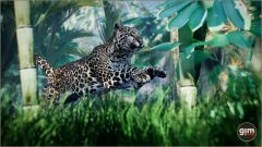 Games_in_Motion_Realistic_Animated_3D_Model-6
