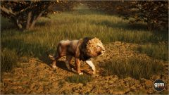 Lion-Games_in_Motion_Realistic_Animated_3D_Model-1
