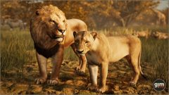 Lion-Games_in_Motion_Realistic_Animated_3D_Model-2