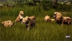 Lion-Games_in_Motion_Realistic_Animated_3D_Model-3