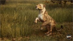 Lion-Games_in_Motion_Realistic_Animated_3D_Model-5