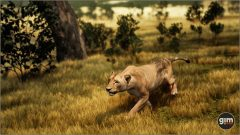 Lion-Games_in_Motion_Realistic_Animated_3D_Model-7