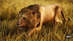 Lion-Games_in_Motion_Realistic_Animated_3D_Model-9