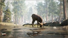 MuleDeer_Games_in_Motion_Realistic_Animated_3D_Model-1