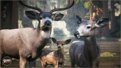 MuleDeer_Games_in_Motion_Realistic_Animated_3D_Model-2