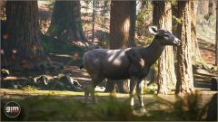 MuleDeer_Games_in_Motion_Realistic_Animated_3D_Model-5