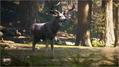 MuleDeer_Games_in_Motion_Realistic_Animated_3D_Model-9