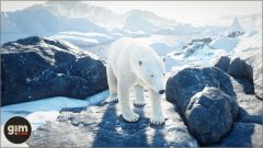 PolarBear_Games_in_Motion_Realistic_Animated_3D_Model-2