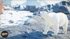 PolarBear_Games_in_Motion_Realistic_Animated_3D_Model-5