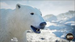 PolarBear_Games_in_Motion_Realistic_Animated_3D_Model-6