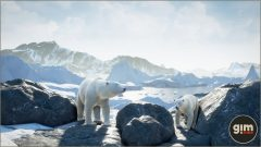 PolarBear_Games_in_Motion_Realistic_Animated_3D_Model-9