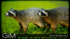 Screenshot_AnimalsRaccoon_01