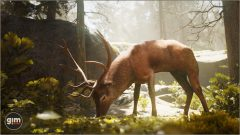Red_Deer_Games_in_Motion_Realistic_Animated_3D_Model-2