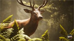 Red_Deer_Games_in_Motion_Realistic_Animated_3D_Model-4