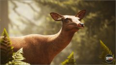 Red_Deer_Games_in_Motion_Realistic_Animated_3D_Model-7