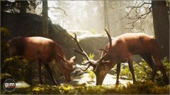 Red_Deer_Games_in_Motion_Realistic_Animated_3D_Model-8