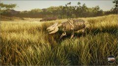 WhiteRhinoceros_Y_02_Bones