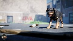 Rottweiler_Games_in_Motion_Realistic_Animated_3D_Model-1