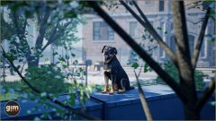 Rottweiler_Games_in_Motion_Realistic_Animated_3D_Model-3