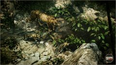 Tiger_Games_in_Motion_Realistic_Animated_3D_Model-2
