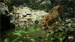 Tiger_Games_in_Motion_Realistic_Animated_3D_Model-4