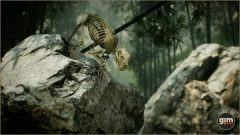 Tiger_Games_in_Motion_Realistic_Animated_3D_Model-9