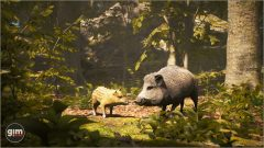 Wild_Boar_Games_in_Motion_Realistic_Animated_3D_Model-1