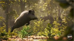 Wild_Boar_Games_in_Motion_Realistic_Animated_3D_Model-4