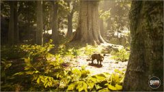 Wild_Boar_Games_in_Motion_Realistic_Animated_3D_Model-8