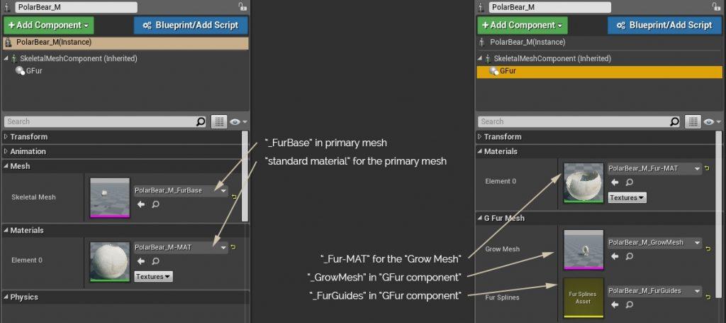 Games in Motion - Realistic Animated 3D Models Animalia Gfur Manual